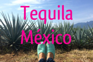tequila mex
